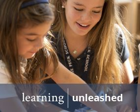 Learning | Unleashed