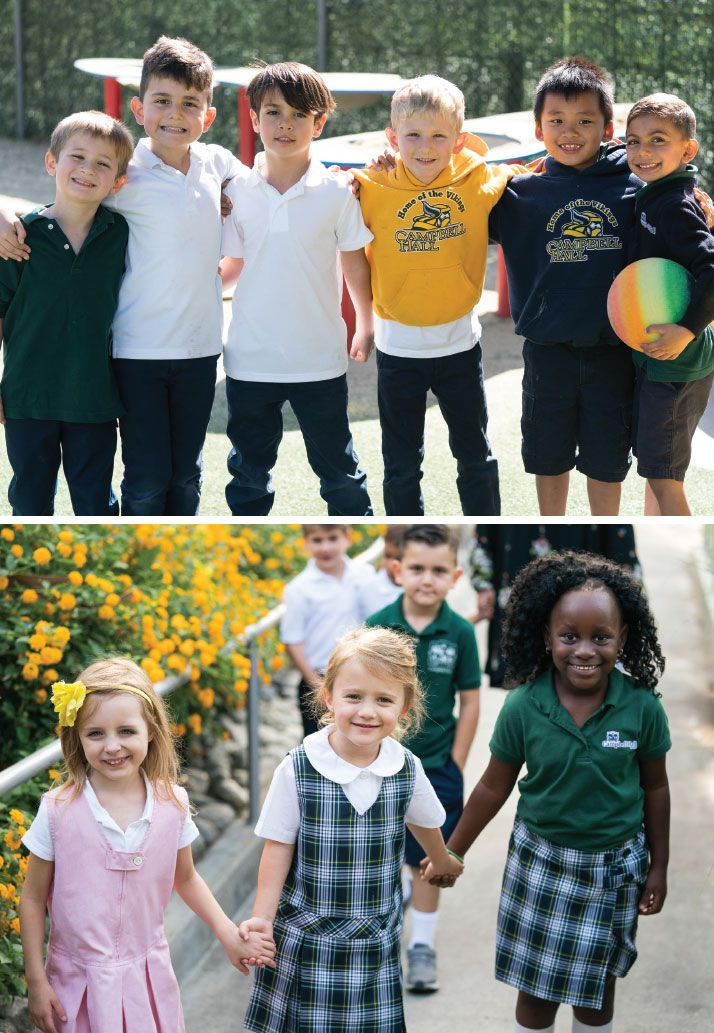 diversity, equity, and inclusion in the curriculum