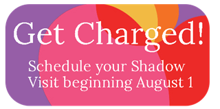 Get Charged! Shadow Program