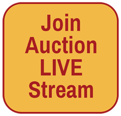 Watch the Auction
