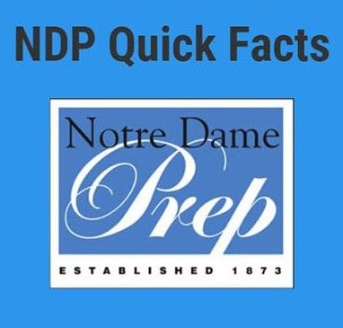 NDP At A Glance